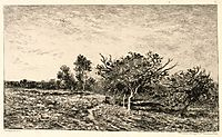 Apple Trees at Auvers, 1877, daubigny