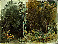 The Edge of a Wood at Nohant, 1843, delacroix