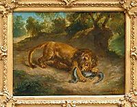 Lion and alligator, 1855, delacroix