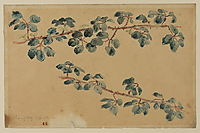 Two branches with leaves, delacroix