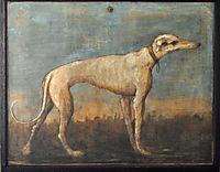 Greyhound, 1793, domenicotiepolo
