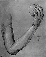 Arm of Eve, durer