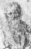 Bearded Man, durer