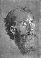 Head of an Apostle Looking Upward, 1508, durer