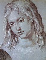 Head of the twelve year old Christ, durer