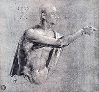 Male Nude, Half Length, 1508, durer