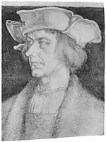Portrait of a man (Paul Hofhaimer or Hans Tucher) , durer