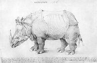 Rhinoceros, durer