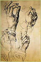 Study of Three Hands, durer