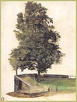 Tilo on the cantilever of a bastion, durer