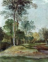 Avenue in the country, dyck