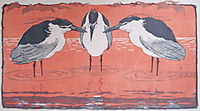 Night Herons, 1896, eckmann