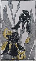 Schwertlilien, 1895, eckmann