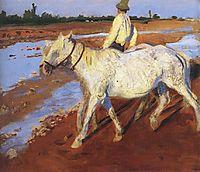 Horses, 1899, ferenczy