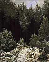 Early snow, friedrich
