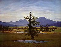 Solitary Tree, 1822, friedrich