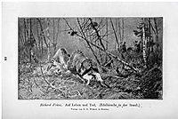 Auf Leben und Tod (Edelhirsche in der Brunft), 1897, friese