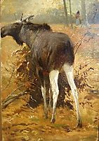Browsing Moose, friese