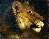 Head of lioness, gericault
