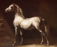 Study of a Dapple Grey, 1824, gericault
