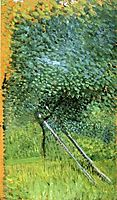 Tree with Ladder, 1907, gerstl
