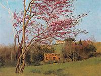 Landscape: Blossoming Red Almond, study, 1912, godward