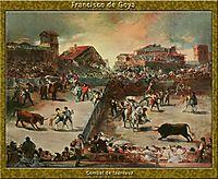 Bullfight, goya