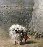 The Duchess of Alba, 1795, goya