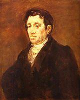 Jose Pio de Molina, goya