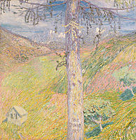 Larch, 1904, grohar