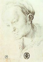 Head of a Young Woman, c.1520, grunewald