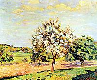 Pommiers en fleurs, 1889, guillaumin