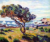 Rafales de vent, Le Brusc, 1911, guillaumin