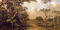 The Great Florida Marsh, 1886, heade