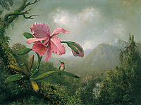 Orchid and Hummingbird near a Mountain Waterfall, 1902, heade