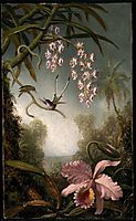 Orchids and Spray Orchids with Hummingbird, 1890, heade