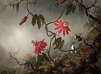 Passion Flowers with Hummingbirds, 1883, heade
