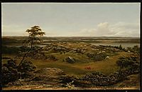 Rocks in New England, 1855, heade