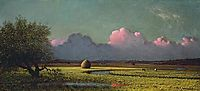 Sunlight and Shadow: The Newbury Marshes, 1875, heade