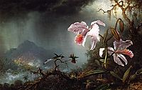 Two Fighting Hummingbirds with Two Orchids, 1875, heade