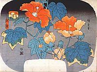 Hibiscus, c.1845, hiroshige