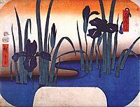 Iris, 1856, hiroshige