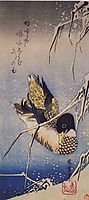 Reeds in the Snow with a Wild Duck, hiroshige
