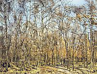 The Beech Forest, 1885, hodler