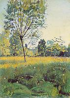 The Golden meadow, 1890, hodler
