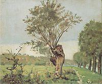 Pastures at the Jonction at Geneva, 1878, hodler