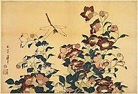Bluebells andDragonflies, hokusai