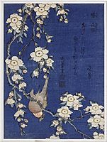 Bullfinch and weeping cherry blossoms, 1834, hokusai