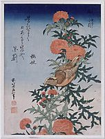 Crossbill and Thistle, 1834, hokusai