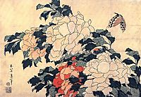 Poenies and butterfly, hokusai